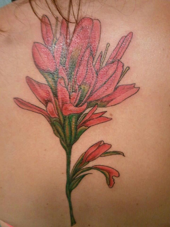 My Indian Paintbrush 3 Brush Tattoo Indian Tattoo Tattoos