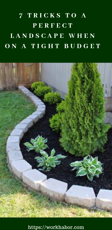 Pro Tips For Landscaping On A Budget Landscape Backyard Landscaping Low Maintenance Landscaping