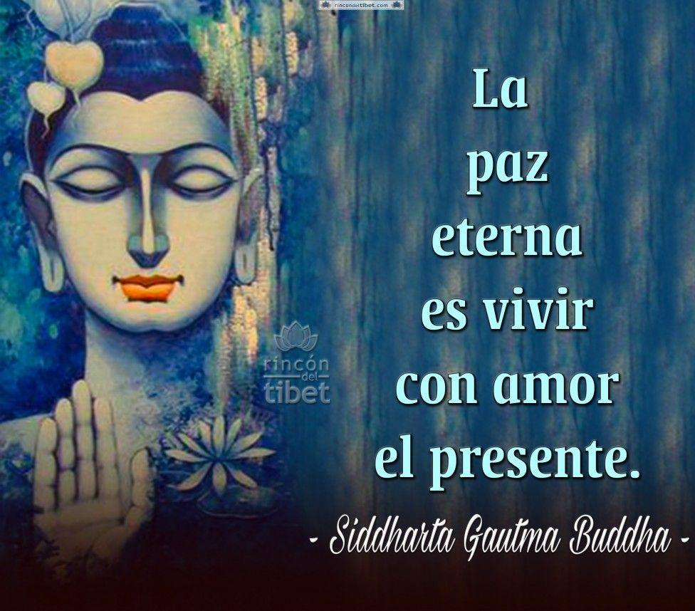 La Paz Eterna Es Vivir Con Frases De Paz Cartelitos De Amistad Paz