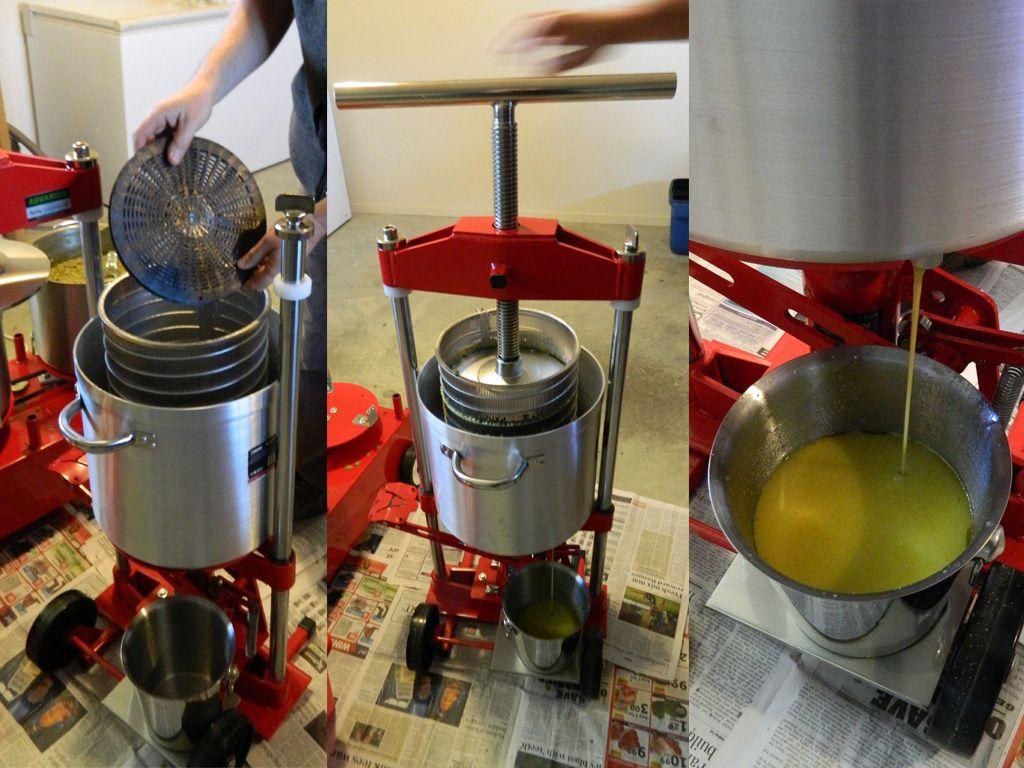 Aquarius 30kg Per Hour Olive Oil Equipment Arbequina Olive Oil Olive Oil Olive Press