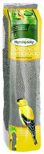 Morning Song 2022138 Goldfinch Thistle Super Sock Feeder for Wild Bird Food, 13-Ounce       #13Ounce, #2022138, #Bird, #Feeder, #Food, #Goldfinch, #Morning, #Sock, #Song, #Super, #Thistle, #Wild