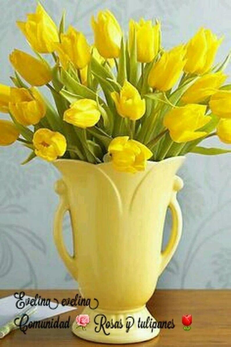 Pin by Olga Sandí on Tulipanes | Pinterest | Yellow vase, Flowers ...