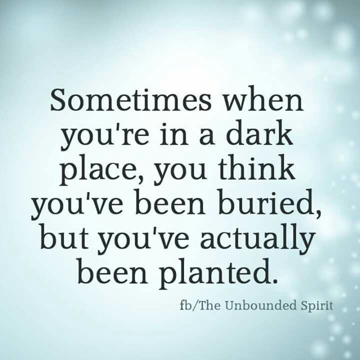 Resilience Quotes Sometimes When You're In A Dark Place You Think You've Been Buried .