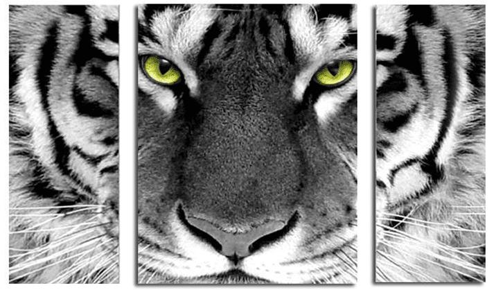 Tiger Face Round Diamond Painting Cross Paintings Diamond Painting Pet Tiger