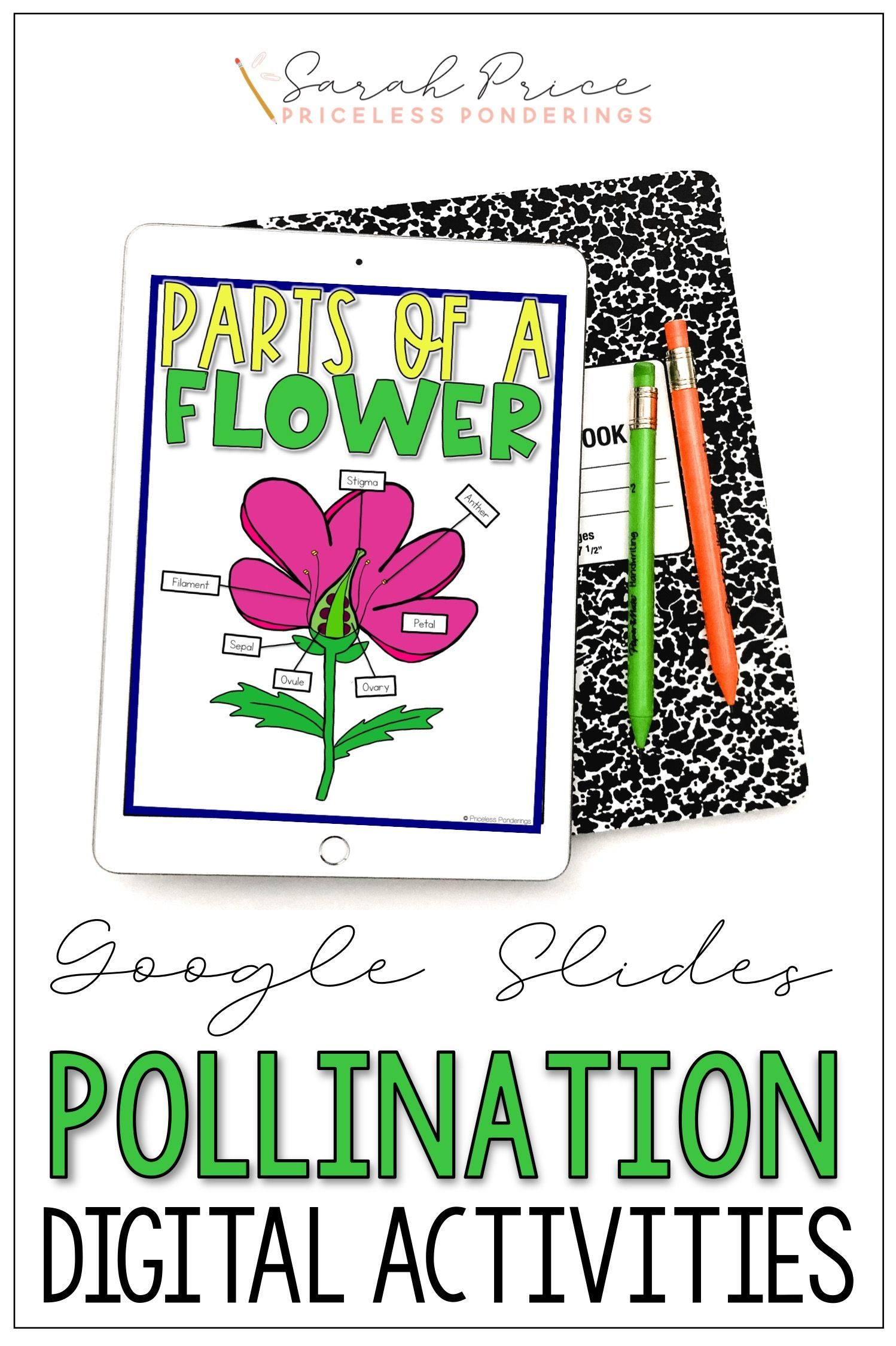 Pollination Activities Google Slides Interactive