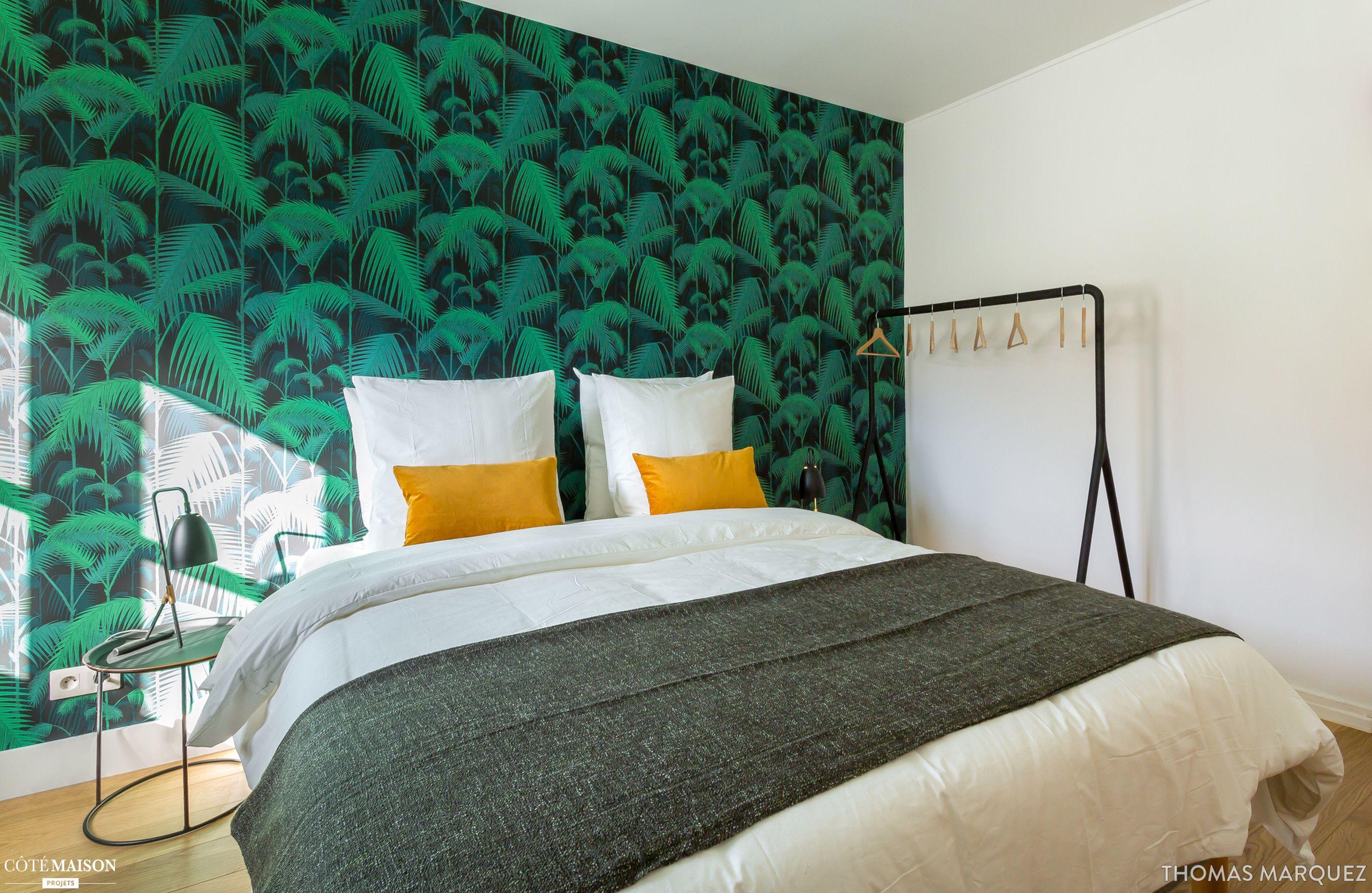 Le Jungle Appartement Renove Pour La Location Thomas Marquez