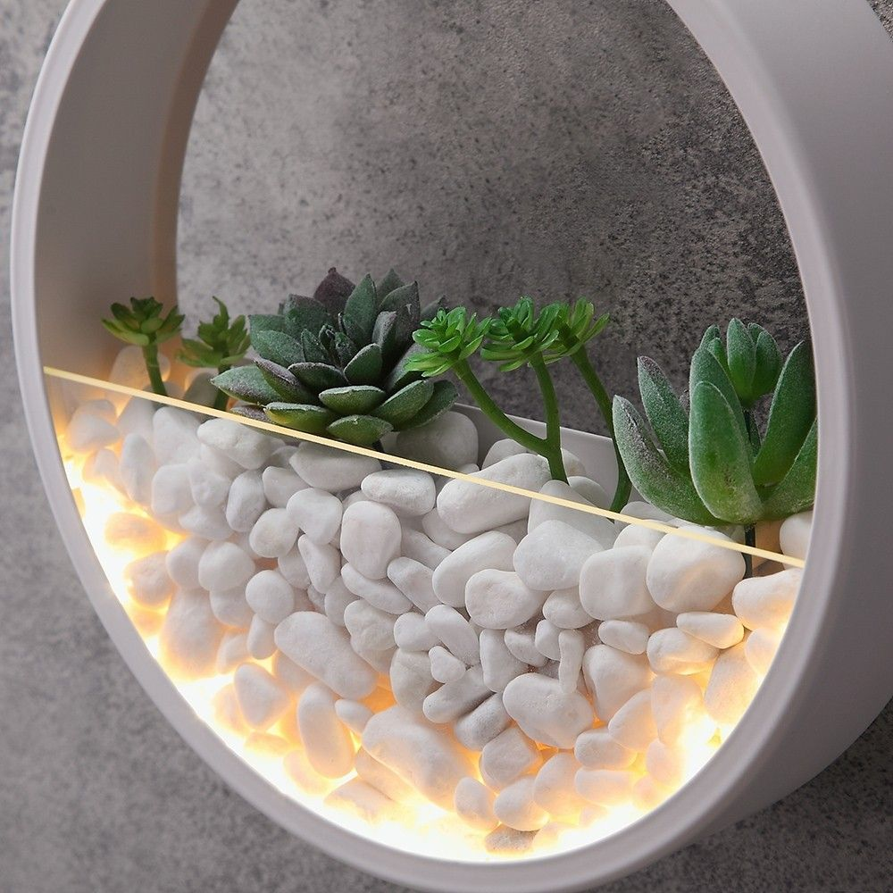 Ultra Modern Led Artificial Mini Wall Planter Round Metal Glass Indoor Wall Light In White Indoor Wall Lights Wall Planter Wall Lights