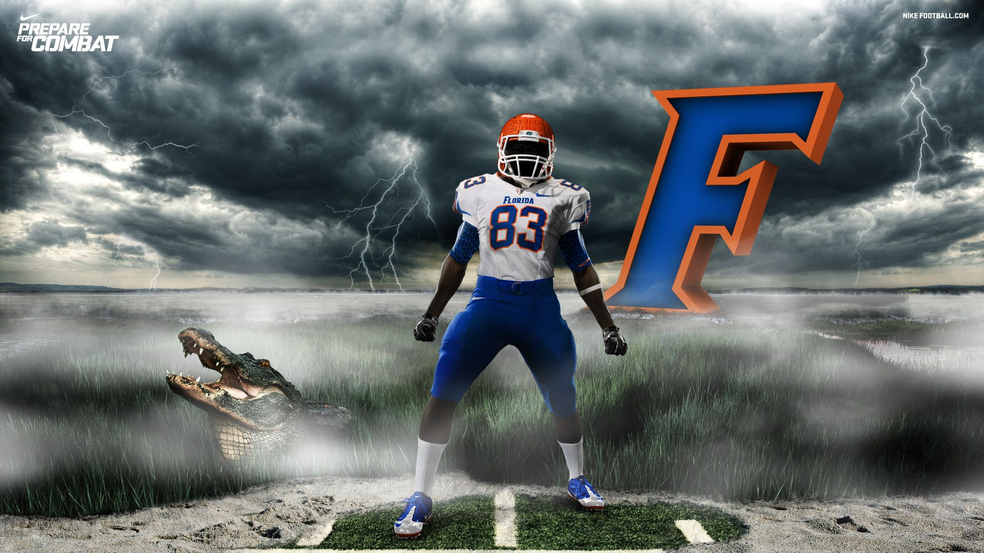 Cool Photo For That Other Florida Team Florida Gators Football Florida Gators Florida Football