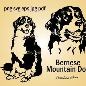 Bernese Mountain Dog svg portrait vector graphic art Bernese Mountain Dog cliprat cut file cuttable design peeking dog dog lovers t