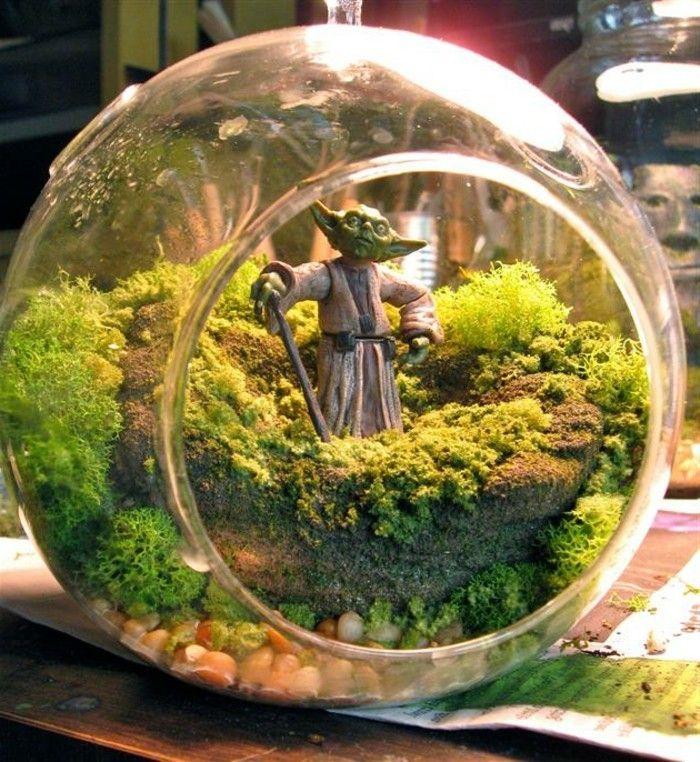 ber 40 vorschl ge wie sie ein terrarium selber bauen pinterest terrarium selber bauen. Black Bedroom Furniture Sets. Home Design Ideas