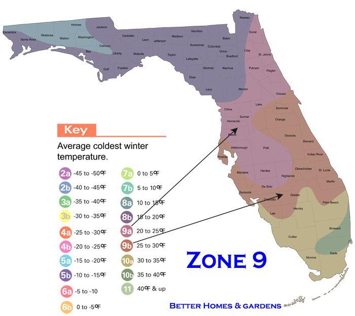 Florida Growing Zones