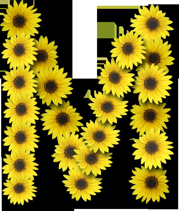 Alfabeto sunflowers .....M | ALFABET | Pinterest