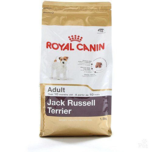 Royal Canin Jack Russell Wholesome And Natural Adult Dry Dog Food