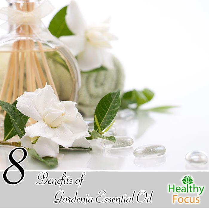 8 Benefits Of Gardenia Essential Oil Gardenia Essential Oil
