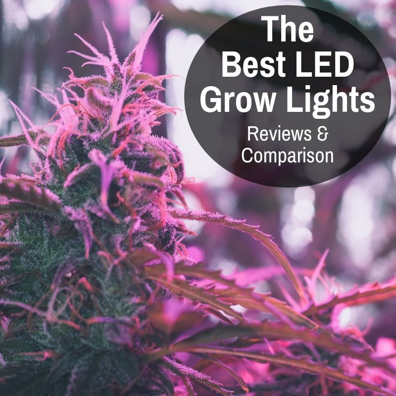 Best Led Grow Lights Reviews Comparison Updated Jan 2020