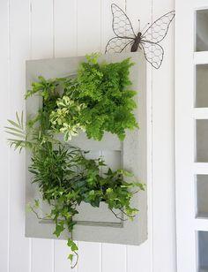 fabriquer un cadre v g tal plante d 39 int rieur. Black Bedroom Furniture Sets. Home Design Ideas