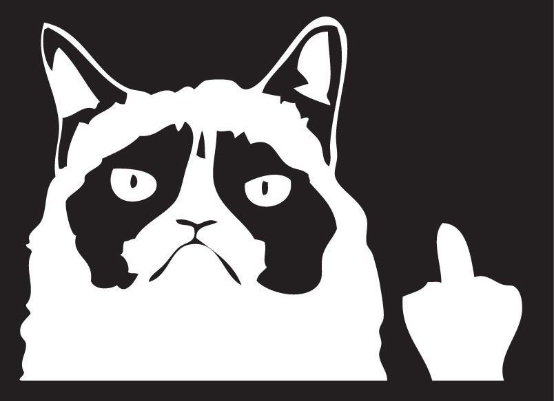 GRUMPY CATMiddle Finger Cat Decal Angry Cat Decal Decals By - Vinyl decal cat pinterest
