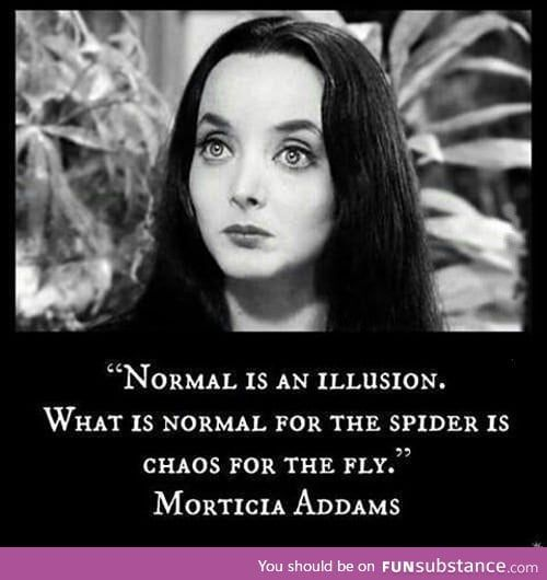 This is a surprisingly good quote from the Addam's Family - FunSubstance