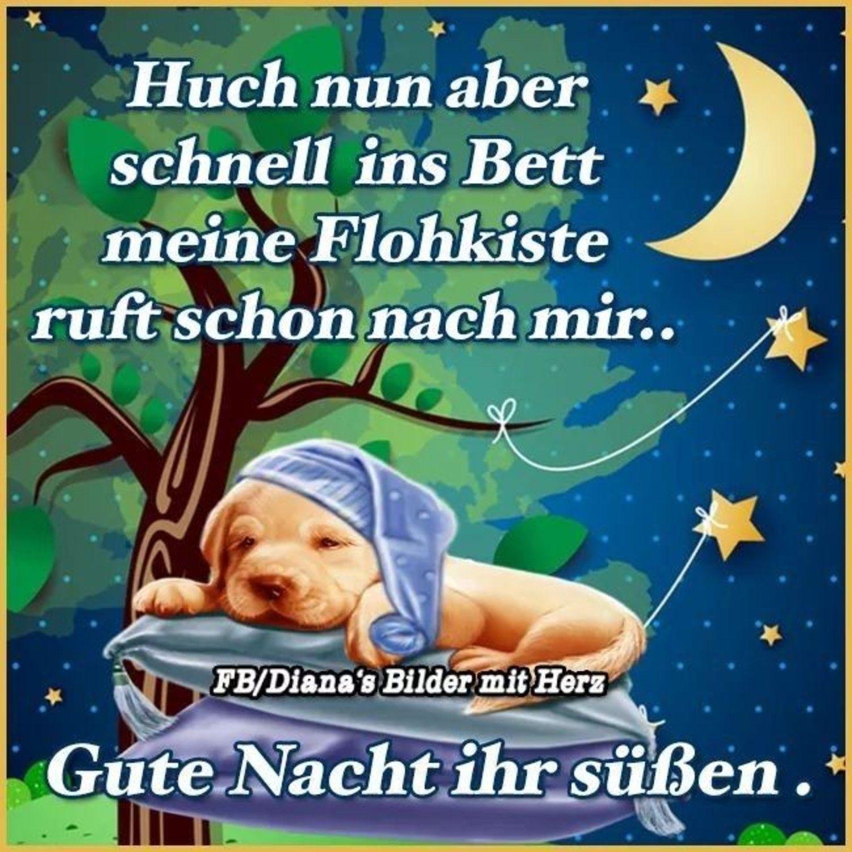 Gute Nacht Bilder Facebook 454 Gbpicsbilder Com Gute Nacht Gute Nacht Bilder Gute Nacht Lieder