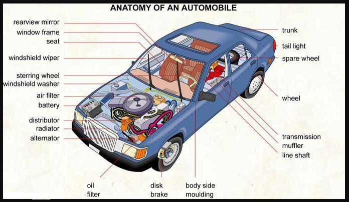 Automobile gross anatomy - www.anatomynote.com | Machine anatomy ...