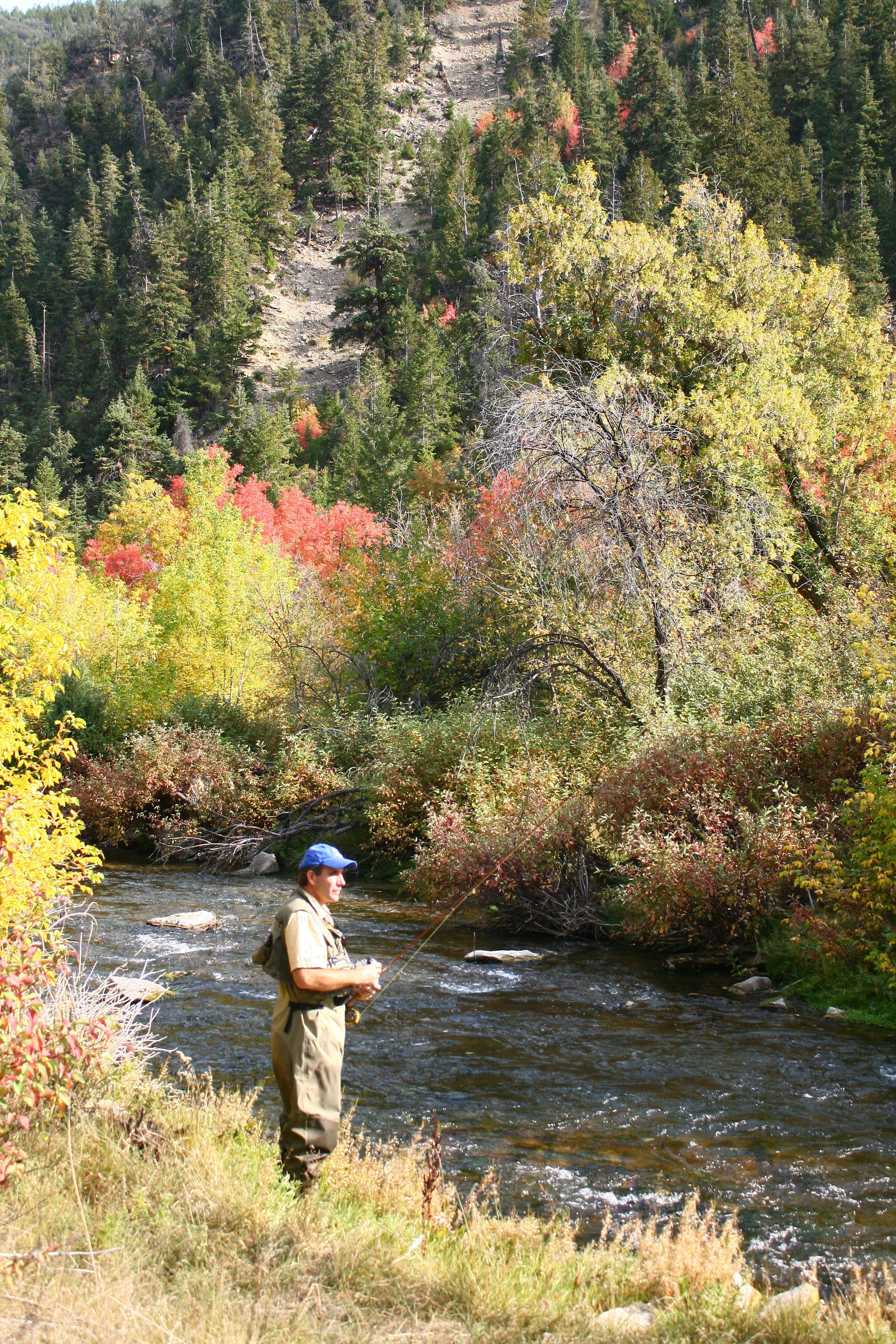 Fall Fly Fishing Utah Fly Fishing Trout Fishing Saltwater Fishing
