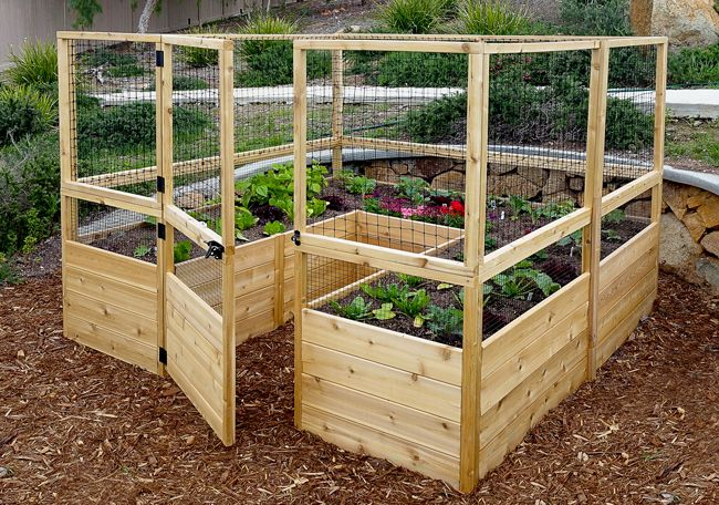 Garden In A Box Kit With Deer Fence Kit 8x8 Garden Boxes