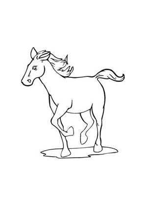 ausmalbild trabendes pferd zum ausmalen. ausmalbilder | ausmalbilderpferde | malvorlagen |