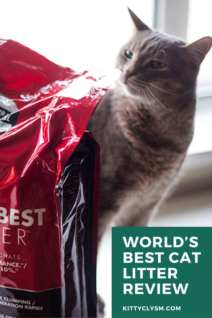 World's Best Cat Litter WholeKernel Corn Kitty Litter