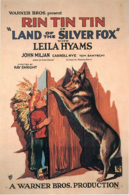 Watch Land of the Silver Fox Full-Movie Streaming