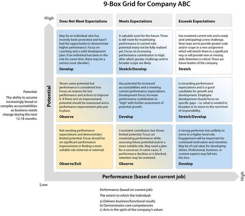 Nine Grid Succession Planning Management Infographic Employee Development