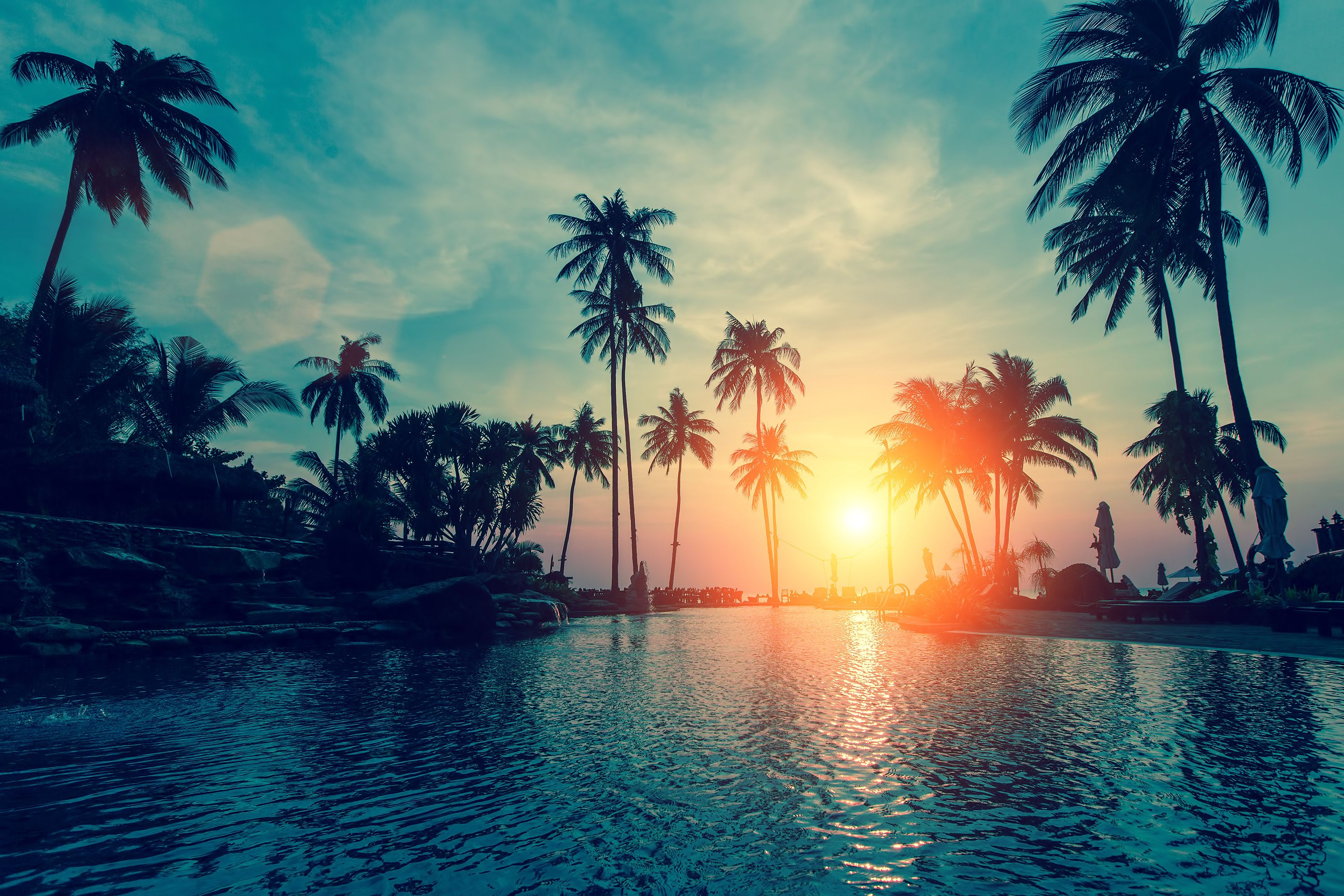 Pin By Jane Danielle On Insta Inspo Palm Trees Wallpaper Tree Hd Wallpaper Sunset Wallpaper