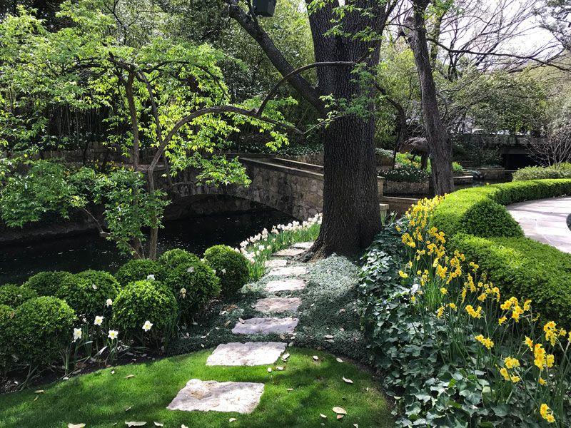 Inspiring Garden Design A Daffodil Landscape In Dallas Private Newport Garden Design Daffodils Storybook Gardens
