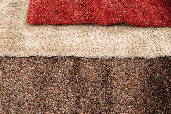 Check Out These Things You Can Do To Make Sure You Find A Reputable And Dependable Car Cleaning Upholstery Carpet Cleaning Company Professional Carpet Cleaning