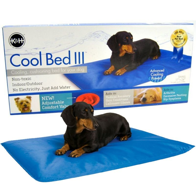 K Pet Products Cool Bed Lll Blue Cushion Bed Cool Dog