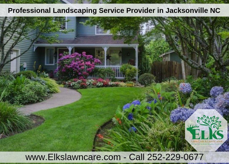 Landscaping Jacksonville NC Yard landscaping, Landscape