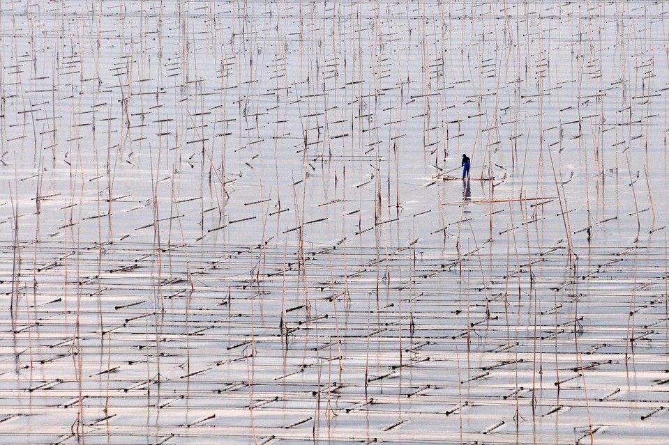 WATERY LANDSCAPE: A person moved through mud flats in Xiapu County, Fujian province, China. (Zhang Bin/Xinhua/Zuma Press)