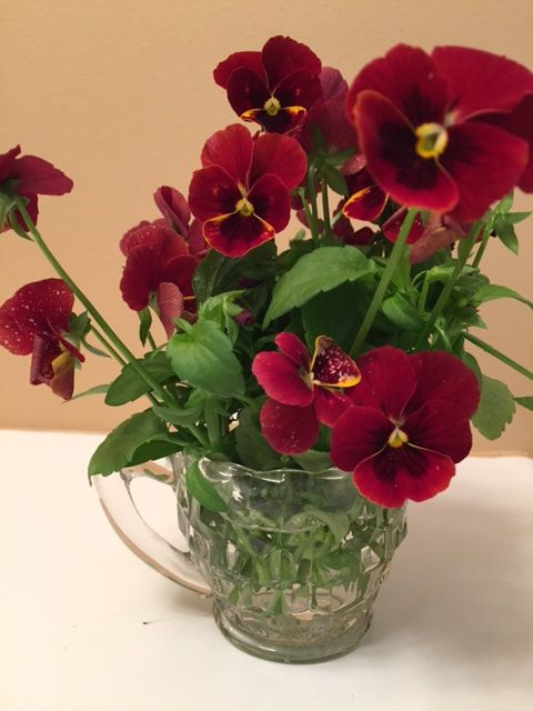 Bring the outdoors in--sweet violas in a crystal creamer.  What could be sweeter!