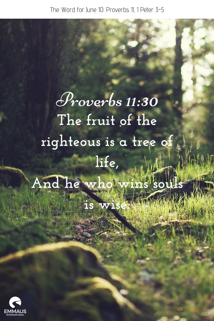 URL Redirect Bible reading for today, Word for today
