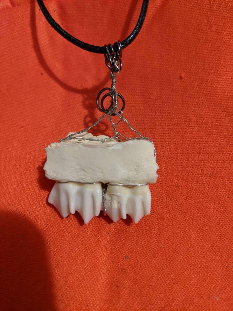 Pendant of Red Deer fang   .