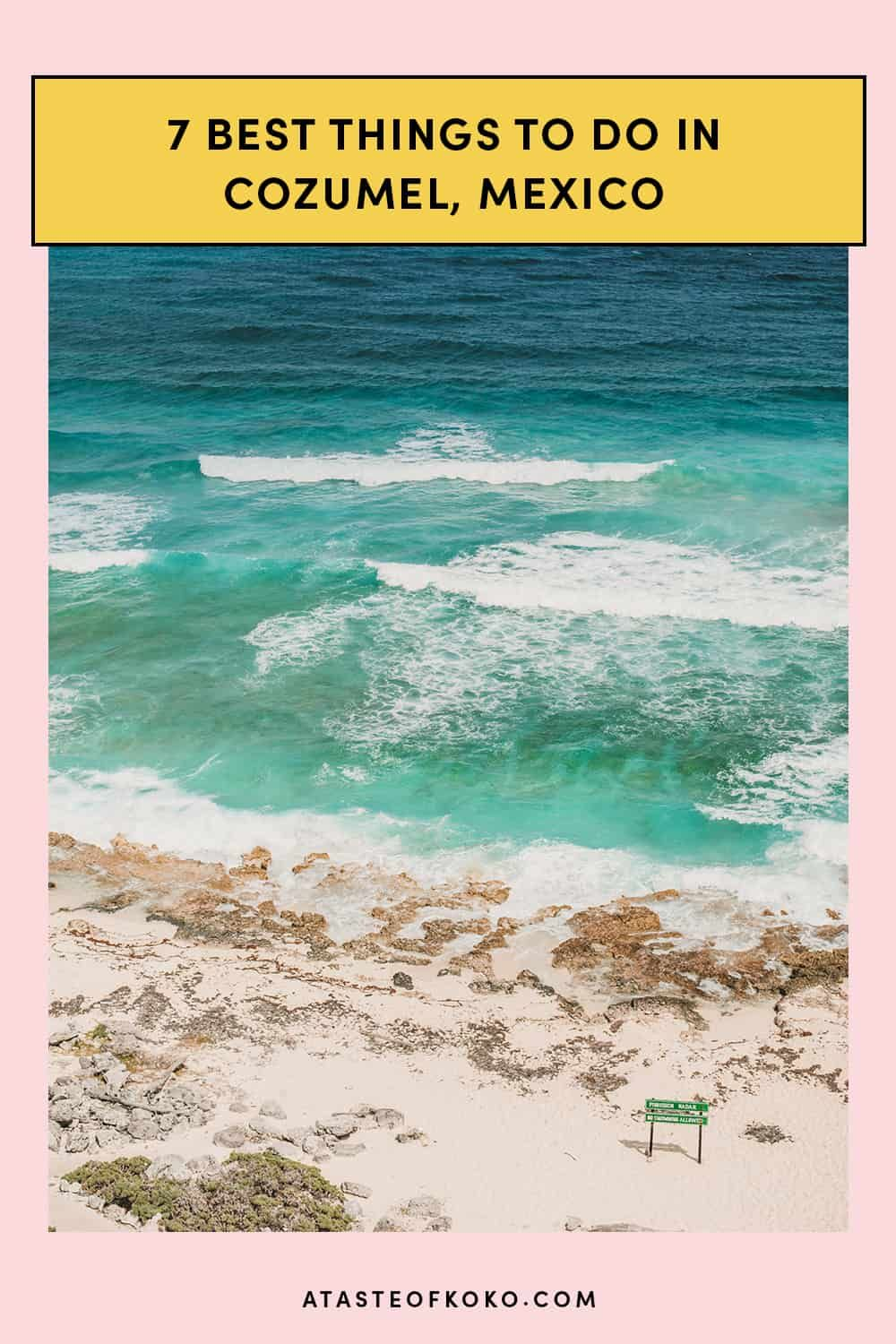 7 Best Things To Do In Cozumel Mexico A Taste Of Koko Travel