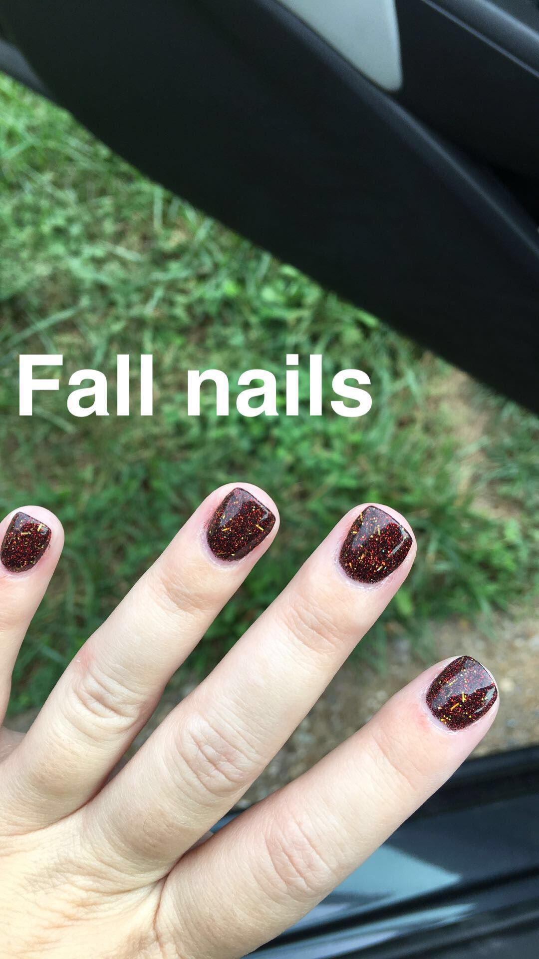 SNS dip , fall nail color \u2026