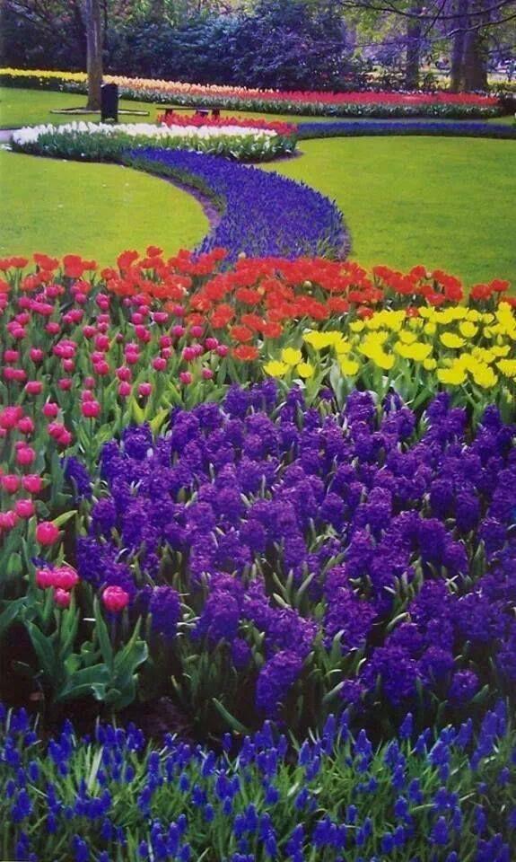 Collection Images Les Plus Belles Fleurs Du Monde Infos Marccantin Com Tous Les Dons Sont Appréciés Dream Garden Beautiful Gardens Gorgeous Gardens