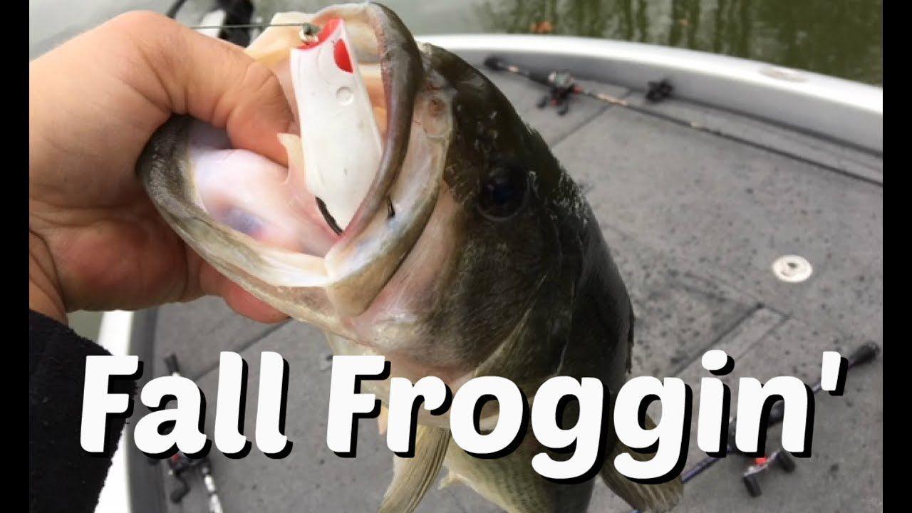 Fishing Uk Frog Fishing In The Fall