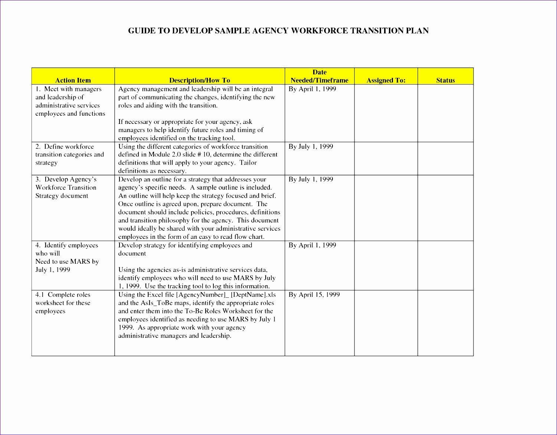 Implementation Plan Template Excel Fresh 9 Implementation