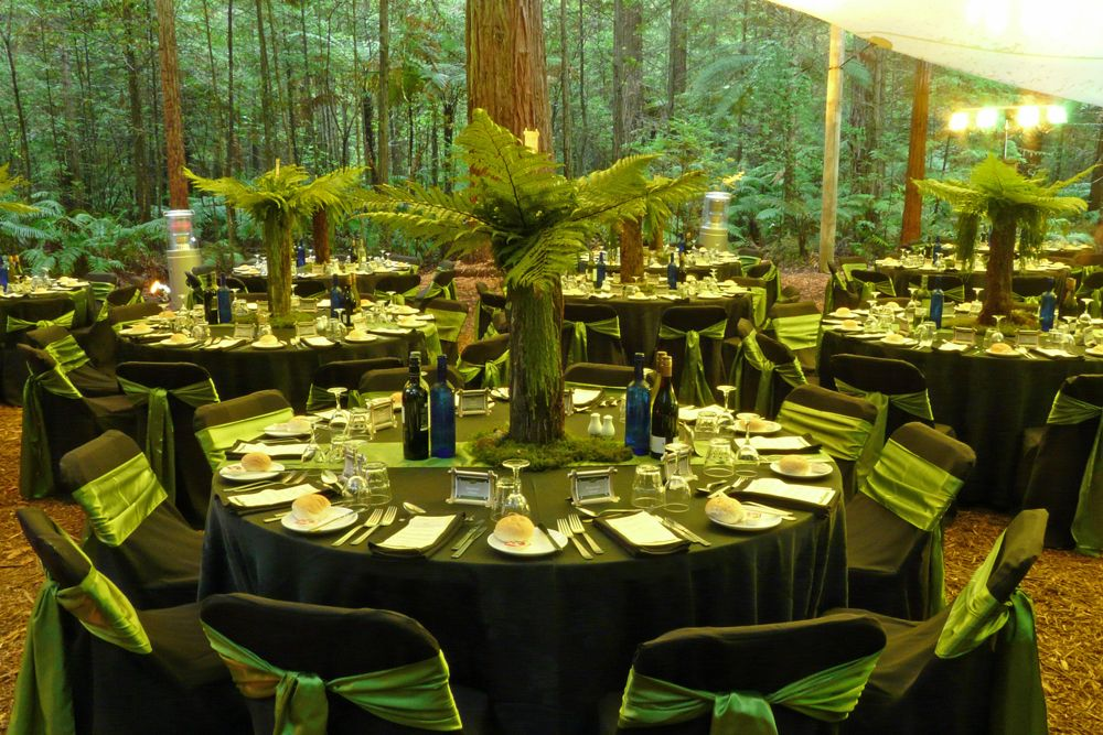 Event impressions redwood forest events rotorua forest see some impressive events recently styled by the creative innovative truly reliable team at event impressions at a range of venues around new zealand junglespirit Image collections
