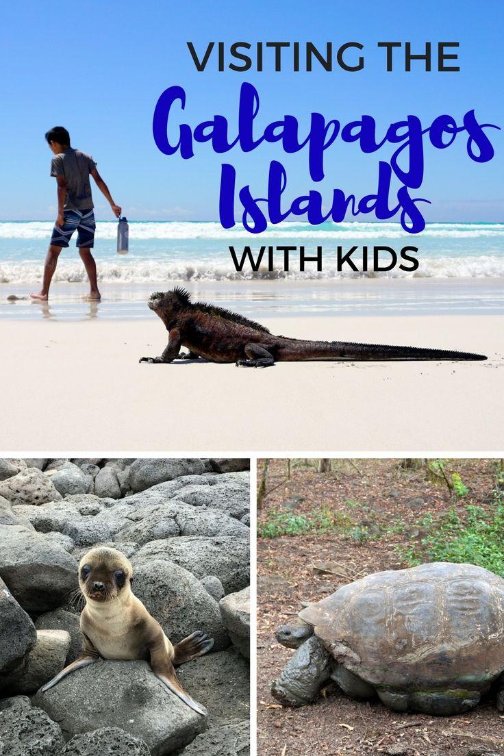 Visiting the Galapagos Islands with Kids | Galapagos trip ...