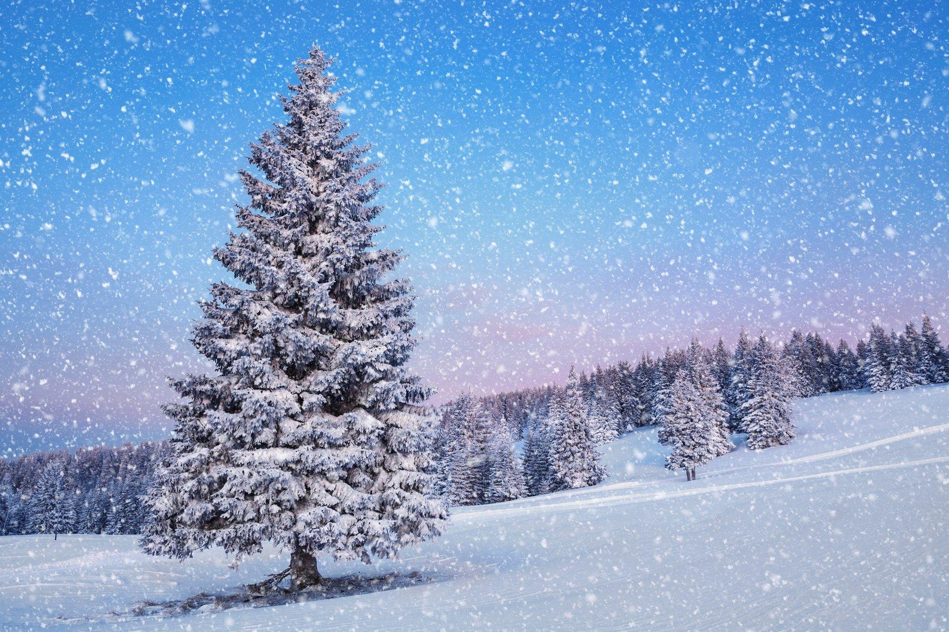 1920x1280 desktop background - winter | gogolmogol | pinterest