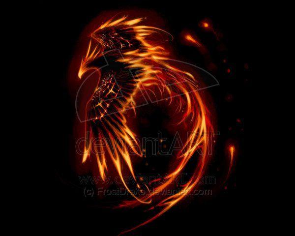 Dark Phoenix Bird Google Search Phoenix Tattoo Phoenix Artwork Phoenix Bird