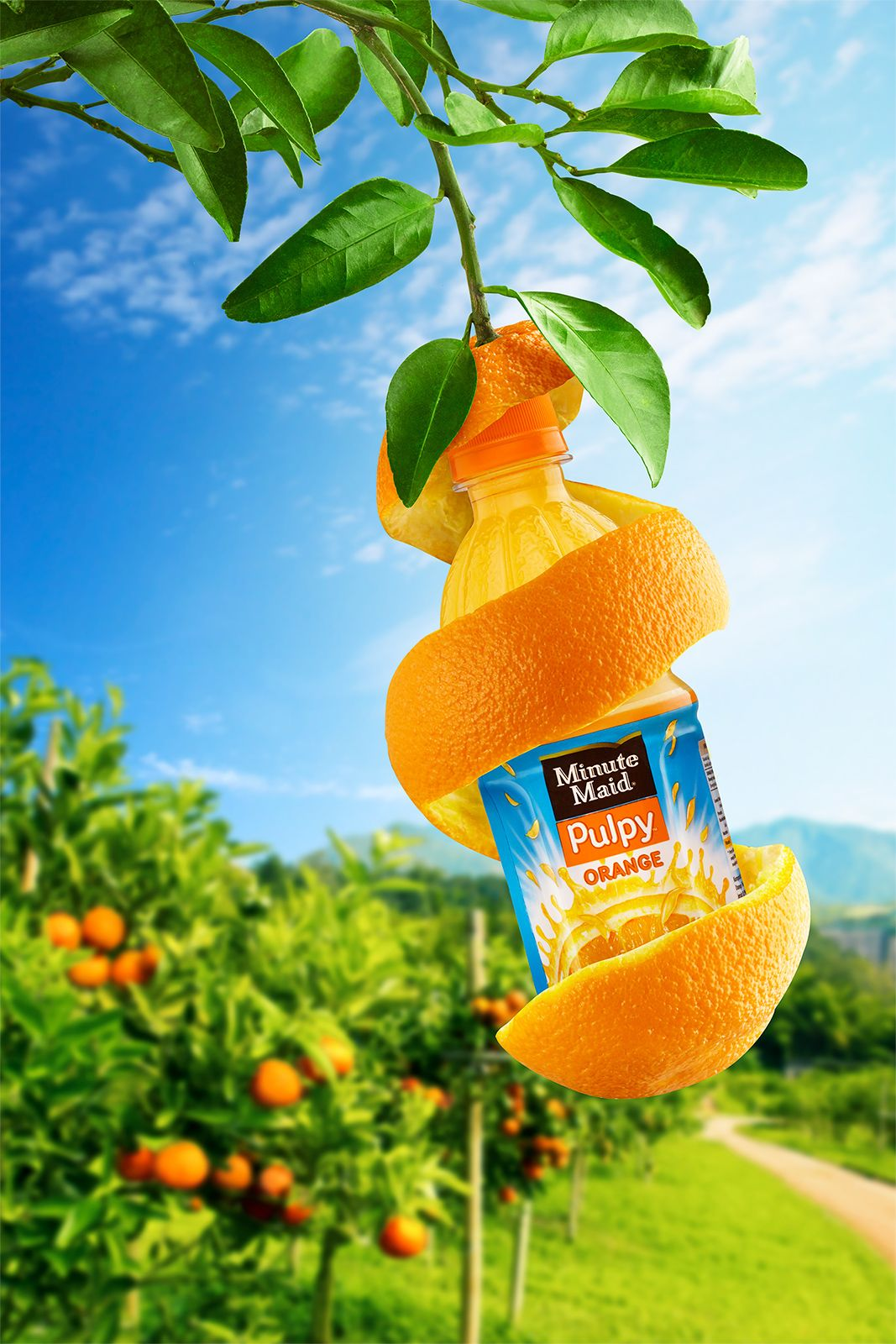 Minute Maid Tree on Behance | Ads creative, Graphic design ...