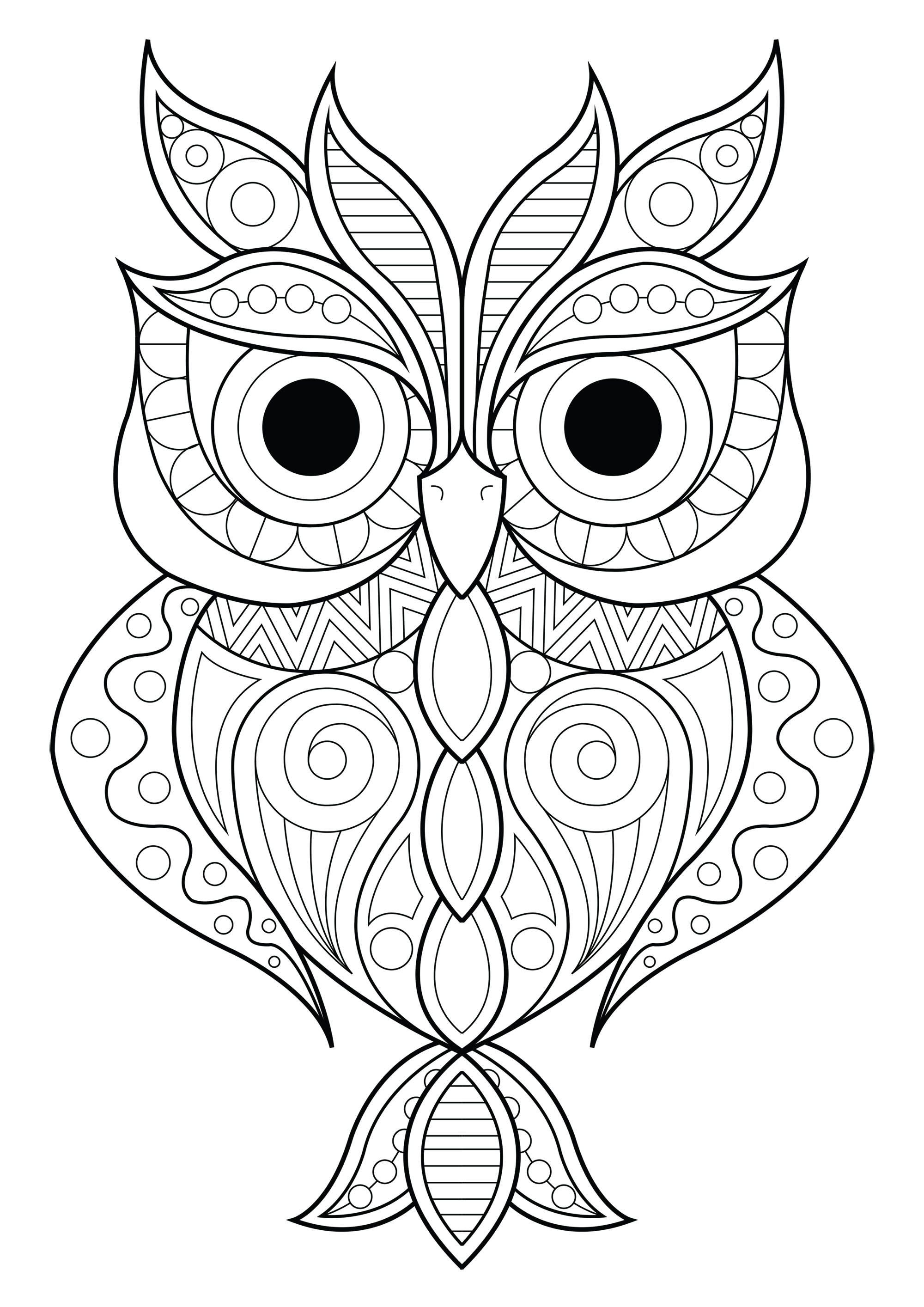 Owl Simple Patterns 2 Owls Coloring Pages For Adults Just